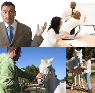 Formation à la communication non verbale facilitée par la relation individu/cheval