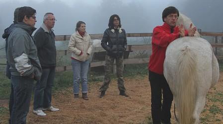 Développement personnel facilité par la relation individu/cheval