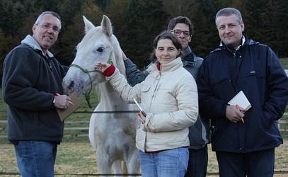 Développement personnel facilité par la relation homme/cheval